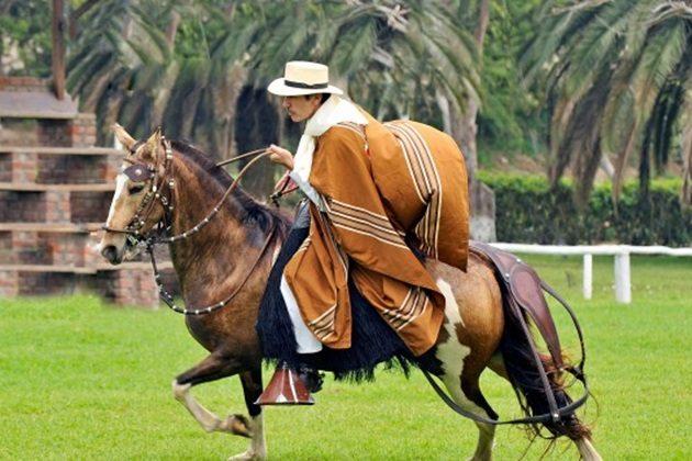 Mañana se realiza el XXX Concurso Regional del Caballo de Paso Piura
