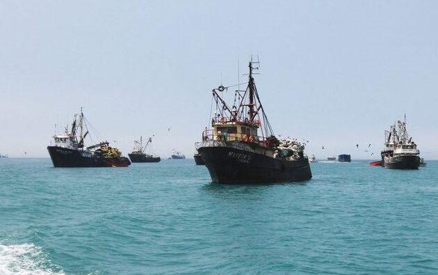 Coronavirus: Perú suspende las exportaciones pesqueras a China