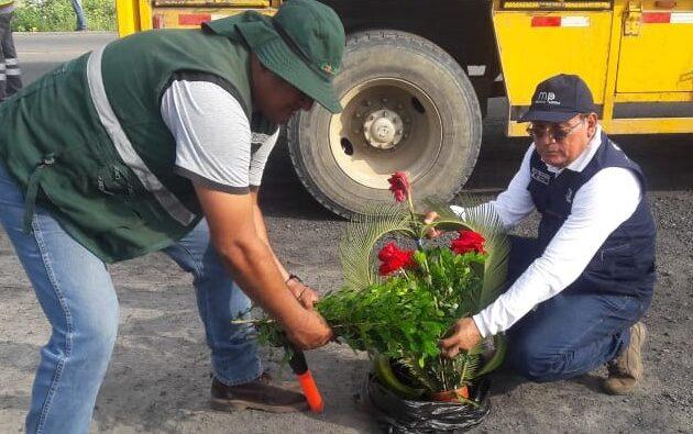Decomisan arreglos florales de Ecuador con plaga Dragón Amarillo