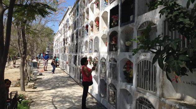 Cementerio San Miguel Arcángel se encuentra libre de Aedes aegypti