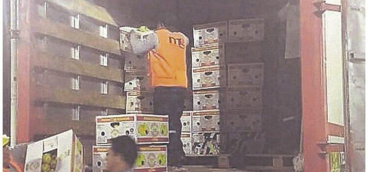 Incautan más de 8 mil kilos de pitahaya en Carpitas