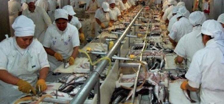 Región Tumbes tendrá planta de procesamiento de recursos pesqueros