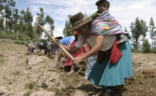Pequeños emprendedores de la agricultura recibirán apoyo